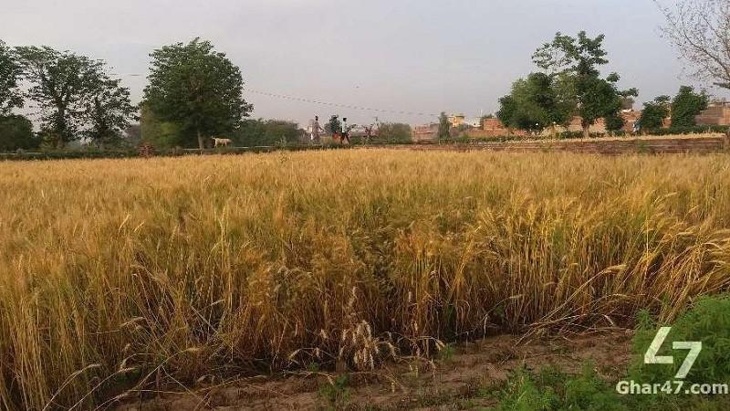 1 KANAL Land, Rasheed Abad Jhelum