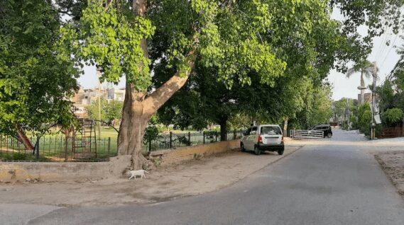 12 Marla Residential Plot For Sale In Johar Town Lahore