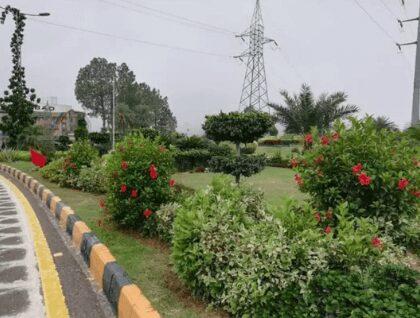 Faisal Hills C Block