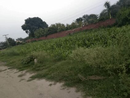 3 Kanal Residential Plot For Sale lush green area in Bedian road Lahore