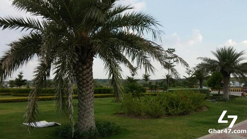 5 Kanal Farm House Available At Fair Price In Gulberg Islamabad