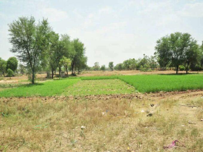Khayaban-e-Amin Lahore 10